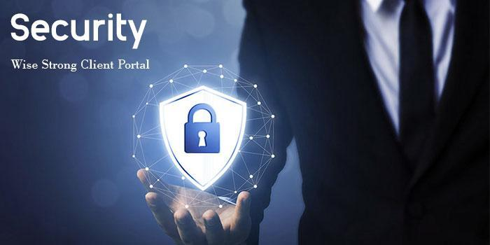 Security Wise Strong Client Portal