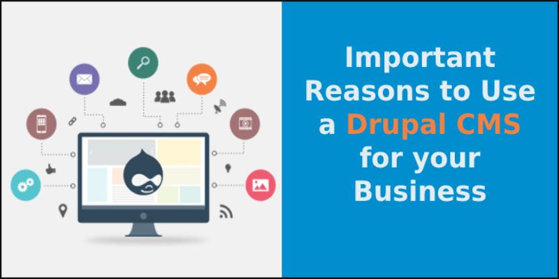 Reasons to Use a Drupal CMS for your Business
